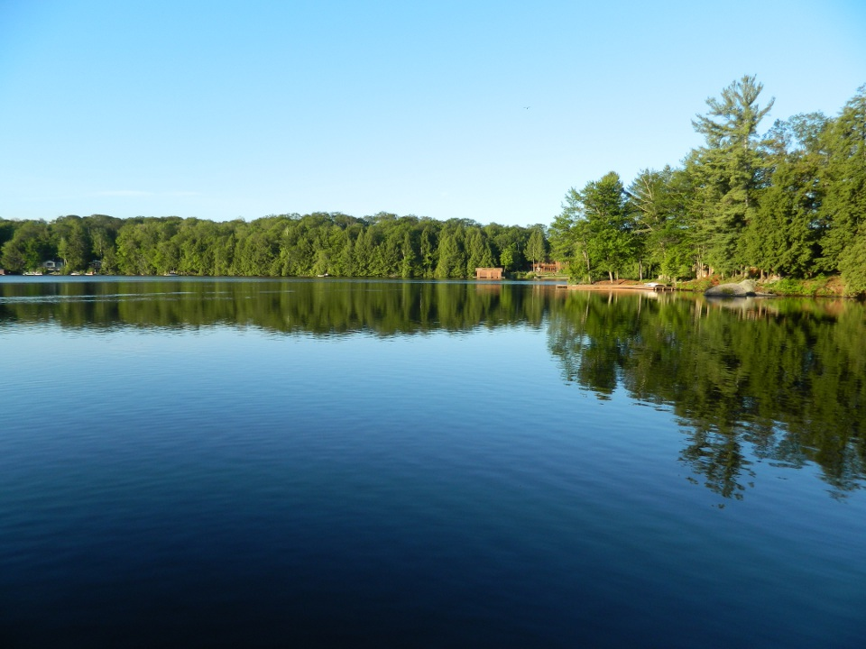 Lake Muskoka summer morning by garden muses: a Toronto gardening blog