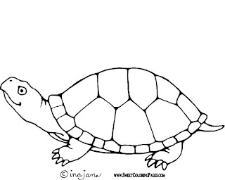 shapes turtle coloring pages - photo#23