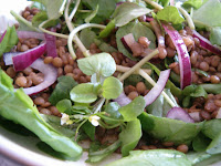 Warm Puy Lentil, Spinach and Watercress Salad with Balsamic Dressing