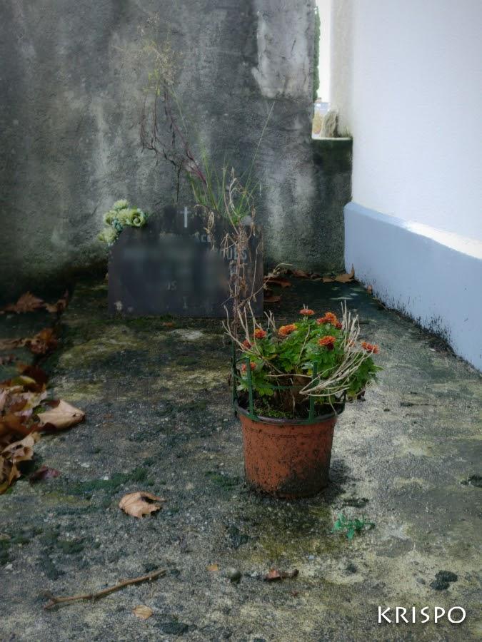 tumba con flores medio marchitas