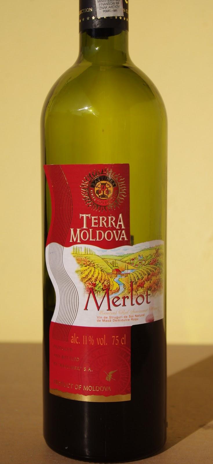wino szczep Merlot
