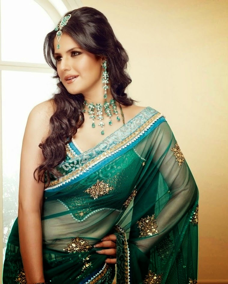 Saree wallpapers and pictures of Zarine Khan