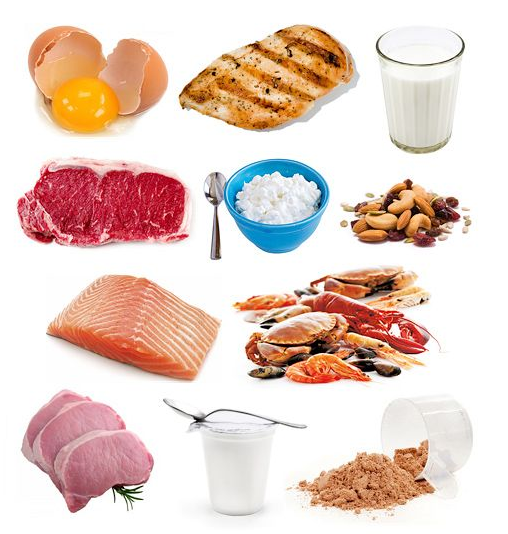 Get your macros right for optimal nutrition a step by step guide for Does fish have protein