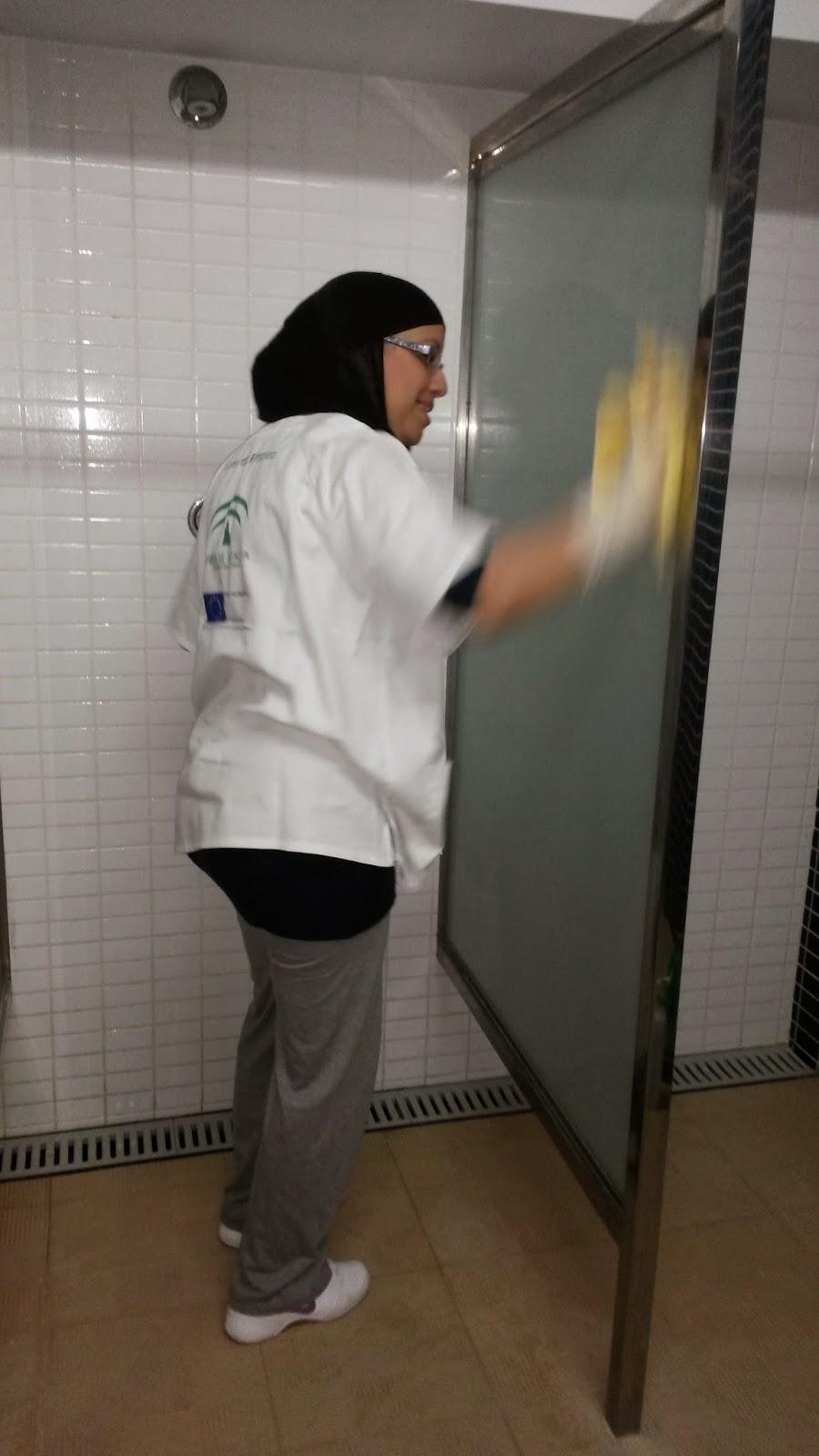 Curso de experto en limpieza y camarera de pisos - Aparatos para limpiar cristales ...