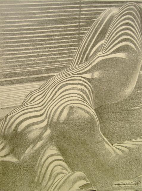 beau zèbre , nu féminin, jeu d'ombres