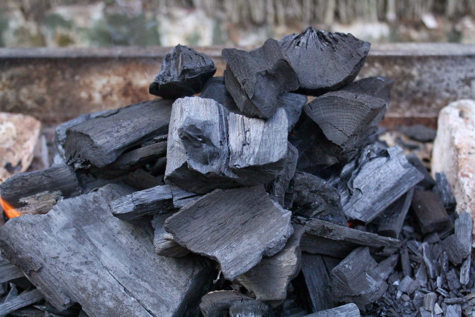 hardwood_charcoal_egypt