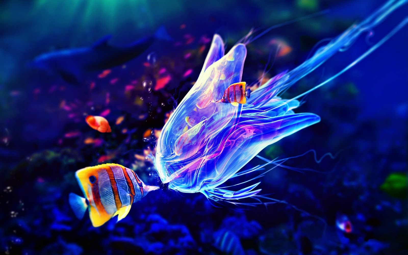 Colorful fish underwater life jelly fish art pics ocean life art - Are Jellyfish Fish The Garden Of Eaden