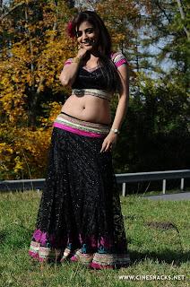 hot actress bollywood nave in saree, down blouse in saree