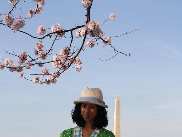 Cherry Blumen