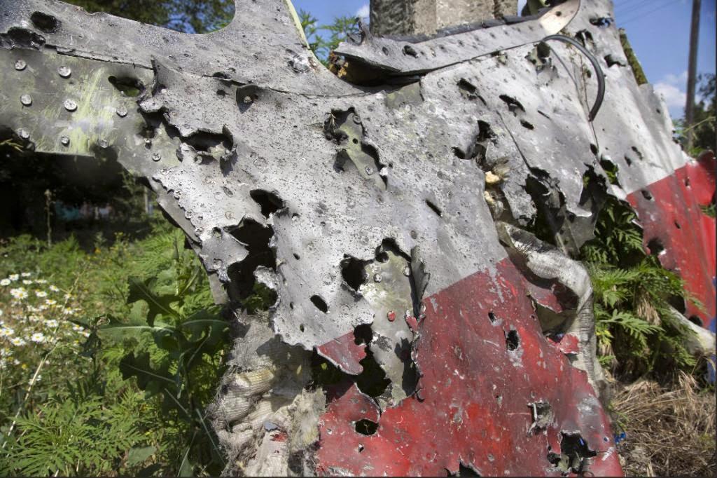 Výsledek obrázku pro Let MH 017