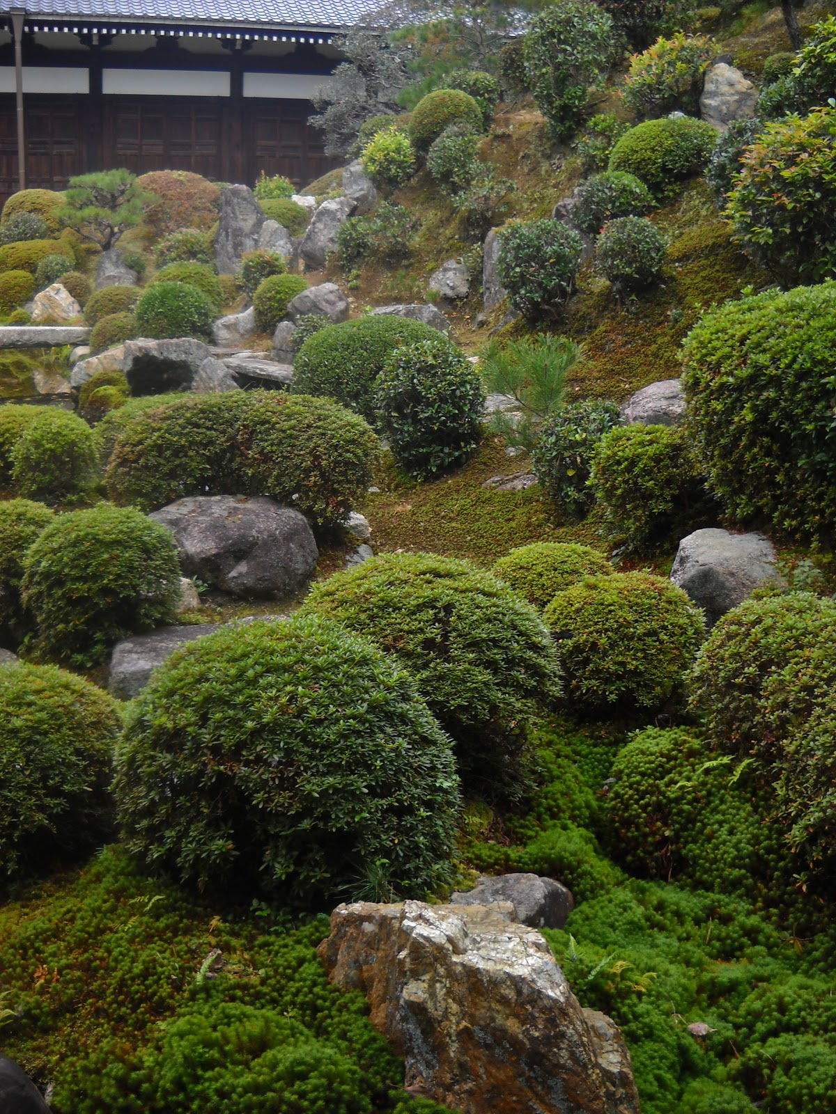 The Traveling Gardener: Strolling Through Kyoto's Temple
