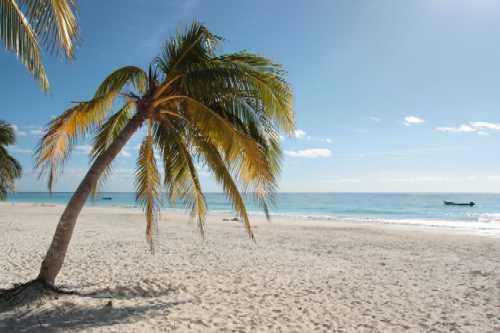 Horseback Riding On The Beach Near Orlando Florida