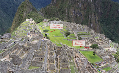 Image of Machu Picchu showing those two trees: Cecropia and Erythrinia.