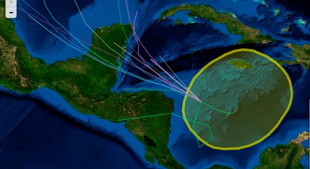 Informa el Centro Nacional de Huracanes: baja presión se intensifica