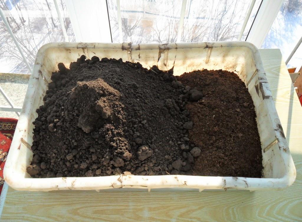 Добавляю к торфу садовую землю в пропорции 1 к 3-4.