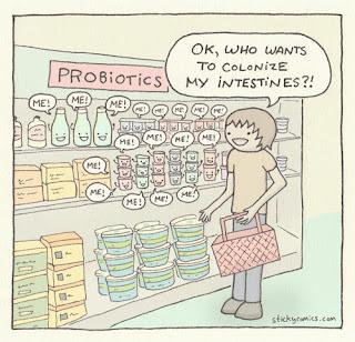 probiotici antibiotici batteri intestinali vignetta