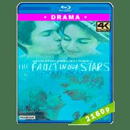 Bajo la misma estrella (2014) 4K Audio Dual Latino-Ingles