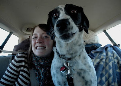 Awkward Dog Smiles Seen On www.coolpicturegallery.us