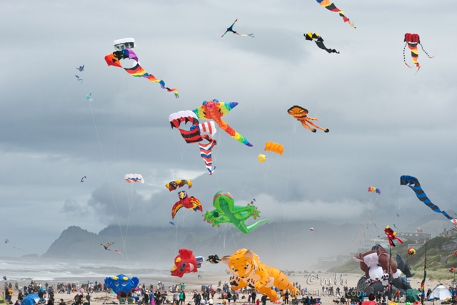 Oregon Kite Festival