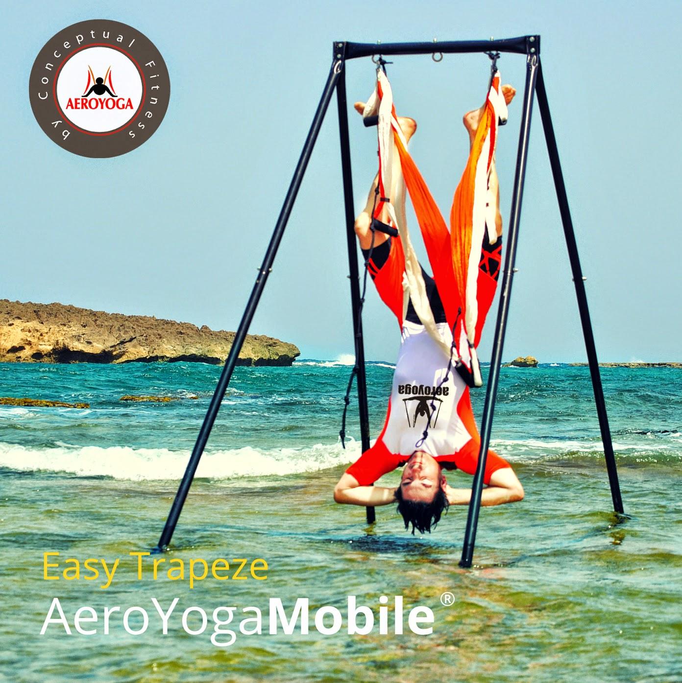 aero yoga trapecio