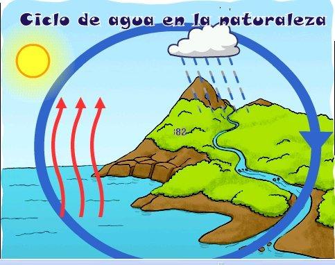 El ciclo del agua en la naturaleza