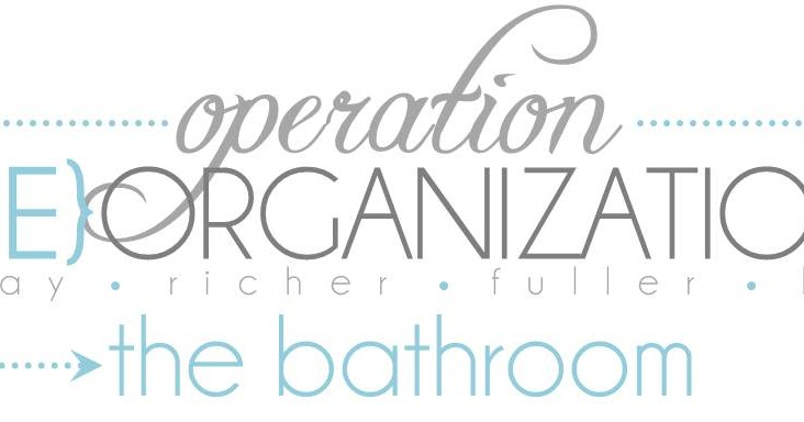 Bathroom Remodel Order Of Operations : Operation re organization the bathroom introduction