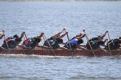 kong extreme land paddle