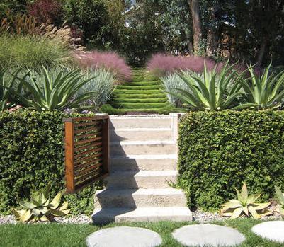 Fotos de jardin jardin para casas - Antejardines pequenos fotos ...