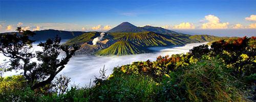 Bromo Amazing Trip (Jogja - Bromo - Ijen Crater - Ketapang / Denpasar / Pemuteran / Lovina)