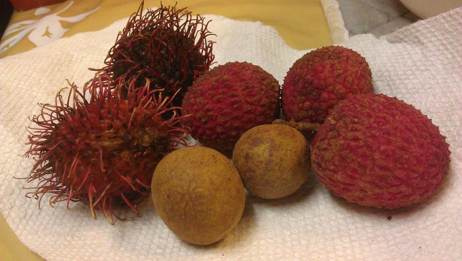 asian fruits you will know them by their fruit