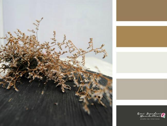 Paleta de colores roxi ameduri marchettini for Paleta colores gris