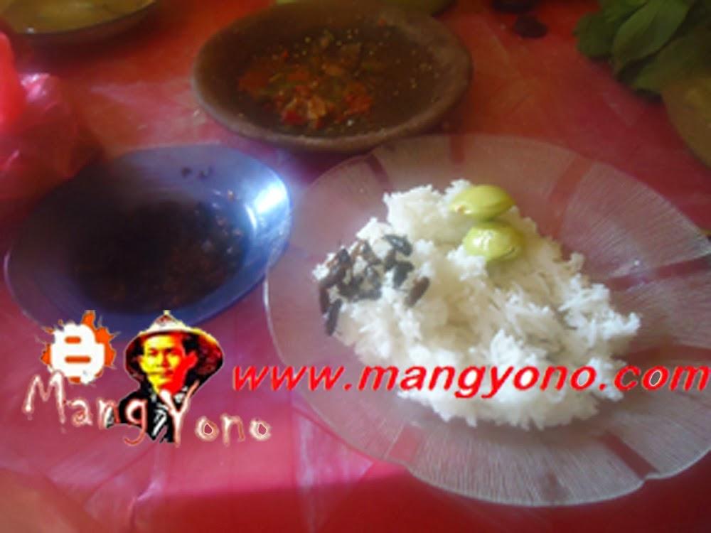 Makan dengan nasi pulen, Sambal goang, Jengkol muda dan Goreng Jangkrik