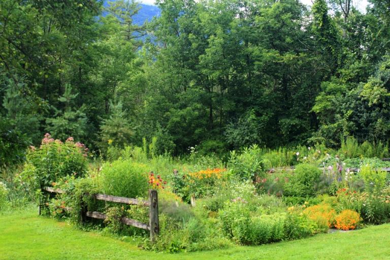 Ewa in the Garden 24 beautiful photos of edible landscape