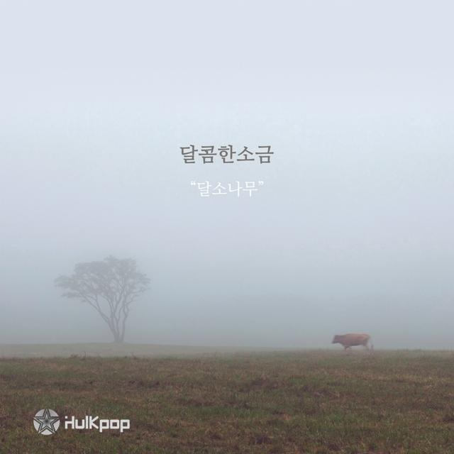 Sweet Salt  – 달소나무 – EP