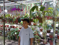 taman orkid liar suhailee