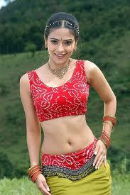Aditi-sharma-Hot-images-2
