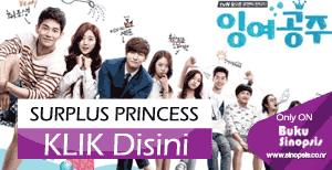 "DRAMA KOREA TERBARU 2014 ""SURPLUS PRINCESS"""