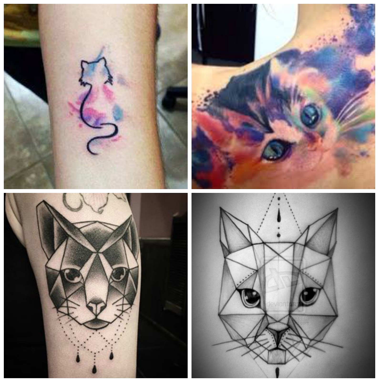 Tatuajes de gatos y como cuidarlas blog da pimpa for Tatoo gatos