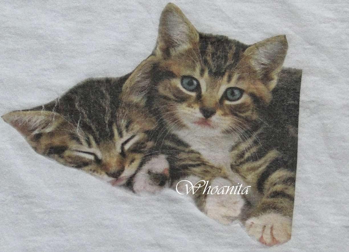 koszulka z kotami, decoupage na tkaninie