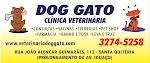 DOG GATO VETERINÁRIA