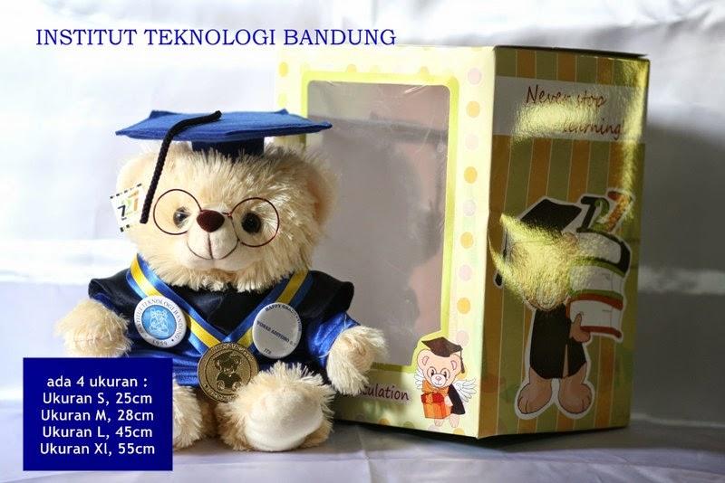 Boneka wisuda beruang teddy bear kabowi bebe graduation doll pake toga logo universitas baju profesi jual cari murah grosir sekolah akademi dokter perawat farmasi apoteker bidan perawat
