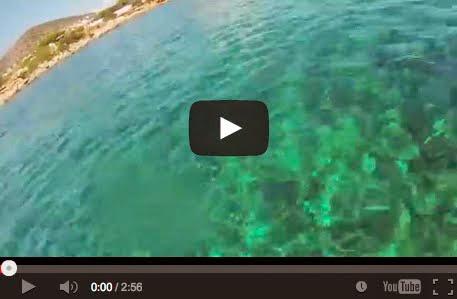 Άρτεμις: Θάλασσα μια Κυριακή - Artemis: At the Sea on September