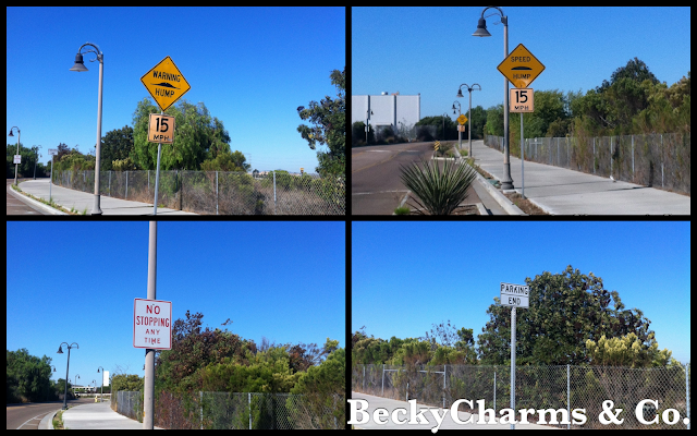 funny, humor, sick, joke, street signs