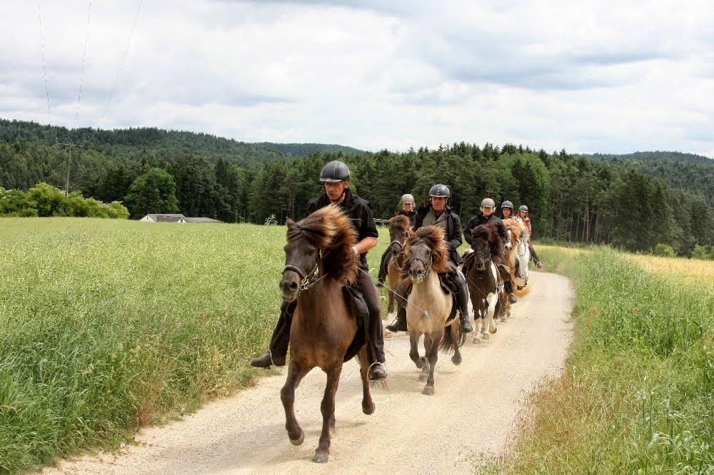 Bilder 4 Tages Sternritt IPZV Norbayerns