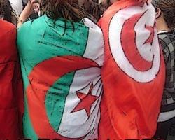 Plus de 80% des Tunisiens insatisfait du rendement de l'Etat