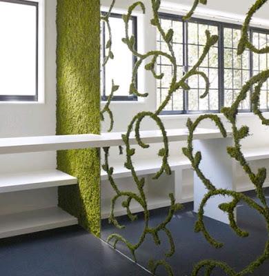 modern design, green