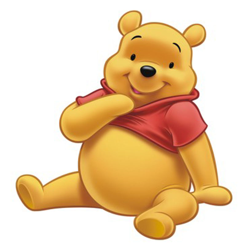Pooh Bear Photo 4