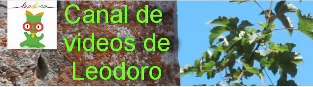 O canal de Leodoro
