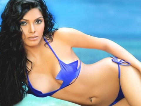 Bollywood actress Sherlyn Chopra's nude pictures banned from twitter