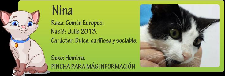 http://mirada-animal-toledo.blogspot.com.es/2013/11/nina.html
